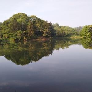 お散歩で行く 三つ池公園