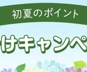 ハピタス 「初夏のポイント山分けキャンペーン」!!