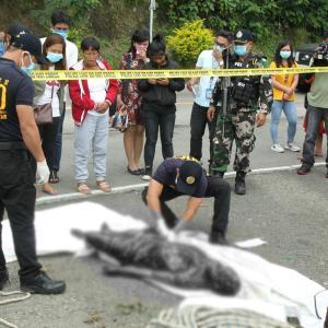 ベンゲット渓谷で見つかった8人の遺体