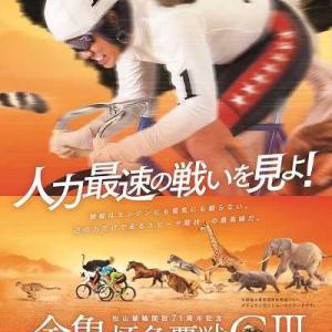 本日(1/21)より松山記念GⅢが始まりました!