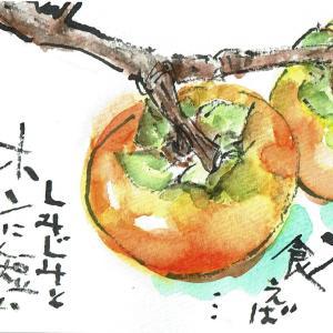マミズマミーの秋日和・柿