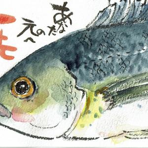 マミズマミーの魚日和・イサキ(左)