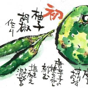 マミズマミーの料理日和・柚子胡椒①