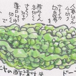 マミズマミーの野菜日和・ゴーヤ