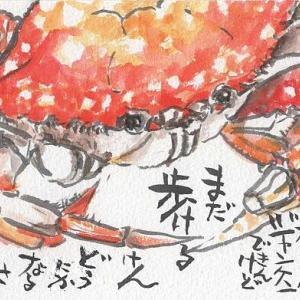 マミズマミーの絵手紙日和・指なしの蟹