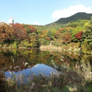 韓国秋のもみじと山岳会そしてペンション