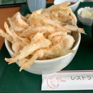 北陸の旅 富山〜能登へ
