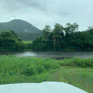 今年は米代川が面白い!