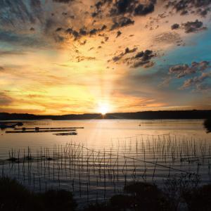 伊勢湾の朝陽