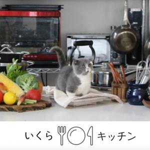 【いくらキッチン】Vo.94 豚キムチチャーハン