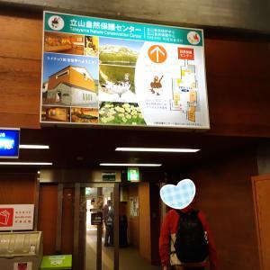 旅行三日目② 富山県『立山自然保護センターとライチョウの願い箱』(2019.5.26)