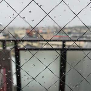 悲しい位に雨が…