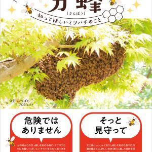 【拡散希望】ミツバチの分蜂(ぶんぽう)について知ってください!