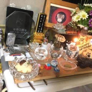 幸三郎へのバースデーケーキ