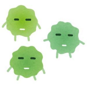 スマホ除菌機!? 除菌と免疫について