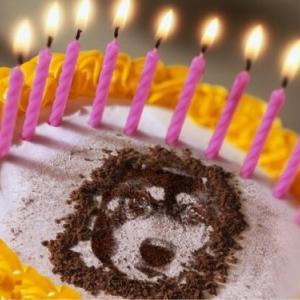 幸三郎の誕生日会