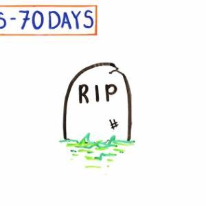 食べ物を一切口にしないと死ぬまでにどんな変化が起こるか 2