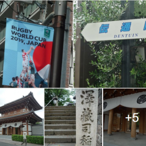 小石川散歩・昨年は、大変に盛り上がりました けど 今年は、しっとりとね『伝通院』 ❢