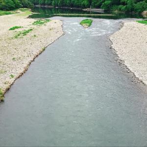 今日は那珂川へ