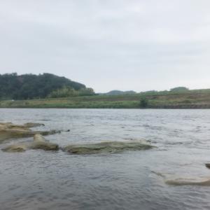 今日も那珂川へ行ってみた!