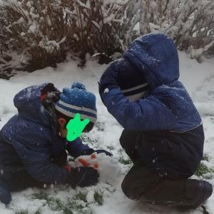 今シーズン初の大雪20cm!!