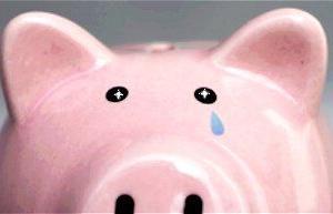 【田舎でひとり暮らし】1ヶ月の生活費は理想的な金額