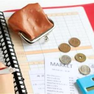 ★収入が毎年下がってるのだから( Φ ω Φ )節約を徹底してます。