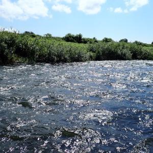 今回は日本海側の小河川