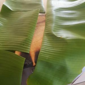 バナナの葉っぱを利用する。