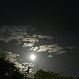 中秋の名月をシンプルにリスペクト