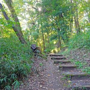 カラスウリを訪ねて、里山の散歩