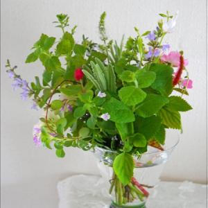 ノーズゲイ(花束4)の花束を、作ってみよう