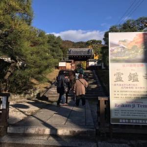 晩秋の京都散策 霊鑑寺