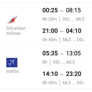 インド(デリー)からモルディブへの飛行機