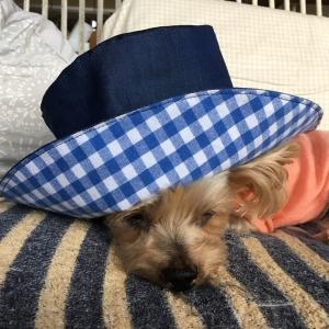帽子を作ってみました(自分のね)☆