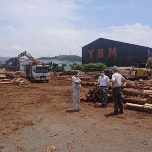 木材価格急騰の現場の声