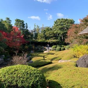 妙心寺塔頭 退蔵院の秋