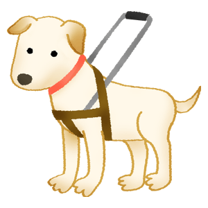 宿泊施設向け盲導犬ユーザー受け入れ・接客セミナー