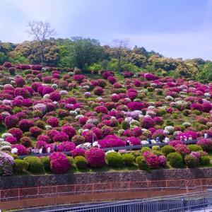 京都、旅気分 岡崎編