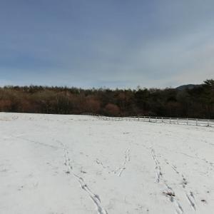 雪景色 ファームショップ