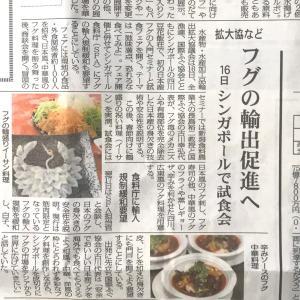 フグの日本代表団⁉️シンガポールへ