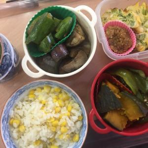 夏野菜のお弁当