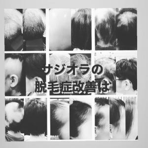 脱毛症改善に於けるサジオラの考え方