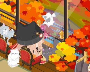 秋ですね・・・