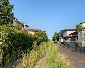 高橋5丁目の緑道の草刈りを行いました。