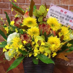 お花の写真 今週のお祝いアレンジメント~プリザーブド&生花