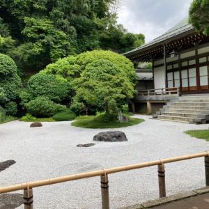 ひとり鎌倉散歩で充電