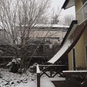 雪が降ったぞ!長野の家。でもあっという間に晴れて☀とけた!