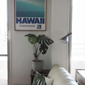 モンステラの葉との相性は最高だね!!夏に向けてコンチネンタル航空のポスターに。