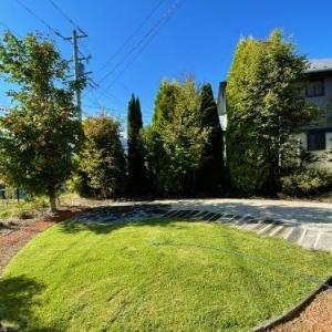 1か月ぶりの長野の家。1か月の放置で芝生はどうなった???